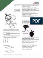 biologia_exercicios_fisiologia_animal_sistema_nervoso_gabarito_resolucao.pdf
