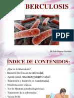 latuberculosispresentacinpowerpoint-140415102400-phpapp02