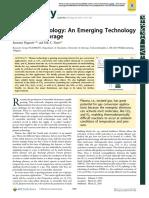 Plasma for Energy Storage