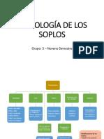 Semiología de Los Soplos