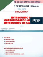 Bq 18 Chi 3 Glicolisis Glucogeno Heli