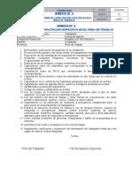 1. Fs-sas-002 Anexo 5