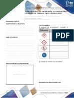 1-Anexo_-_Formato_preinformes_e_informes_(2)