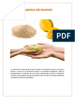 Harina-de-mango-completo (1).docx