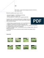 Acoperis Verde Modular