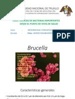 Bacterias Para Farmacia