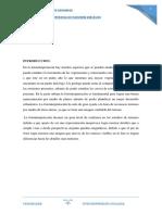 204385226-FOTOINTERPRETACION-LITOLOGICA.docx