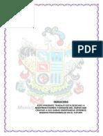 327918455-MONOGRAFIA-DE-ICA-pdf.pdf