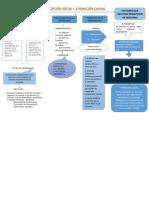 Mapa Conc.percepción Social y Atribución Causal