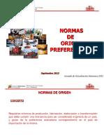 01_Normas_origen_(MinComercio_Exterior).pdf