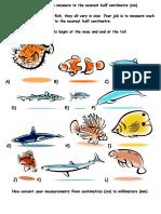 Length of Fish