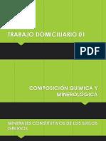 TRABAJO DOMICILIARIO 01.pptx