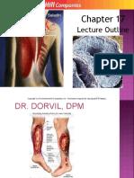Dr.dorvilchapt17 ENDOCRINElecture