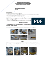 Desarrollo Actividad Obtención de Extracto de Mandarina