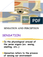 Sensation Perception