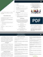 triptico consejo estatal 18-19 correcto.pdf