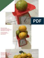 8 WA +62 852.6872.6777, Jual Jeruk Bengkulu.pdf