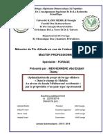 optimalisation_du_projet_de_forage_offshore_dans_le_champ_de_mahdia_au_niveau_du_bassin_mediterrane_occidentale_par_la_proposition_d_un_puits_type_representatif.pdf
