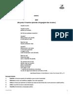 10 Portugues Areal Testes