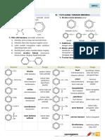 benzen_kim4_3.pdf