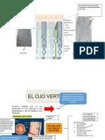 Propiedades Quimicas de Los Hidrocarburo