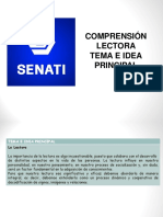 4.7 Tema E Idea Principal