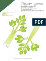 vegetales papel 6