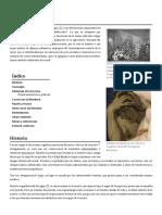 Locura.pdf