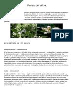 Flores del Alba.docx