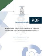 Informacion Sobre El Titulo Profesional de Especialista en Anatomia Patologica PDF 219 Mb