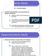 Desenvolvimento Adulto - Aula Guará