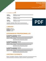 8 Modele Cv Professionnel Orange