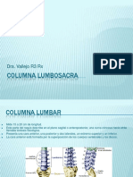 columnalumbosacra-130704090817-phpapp02.pdf