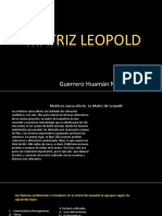 Matriz Leopold Guerrero