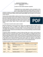 practica8.docx