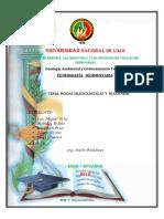 Rocas Siliciclásticas y diagénesis.pdf