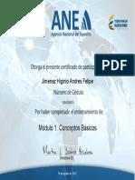 Andfel Modulo 1 - ANE