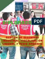 Gestión de Seguridad Industrial Fiscalización Laboral y Medio Ambiente