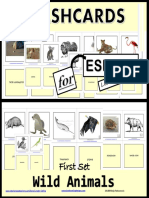 Flashcards Wild Animals Final Tpt
