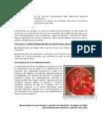 Observacion Microscopica de Bacterias