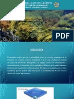 Ordenamiento Del Agua Pres.