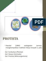 2. Protista