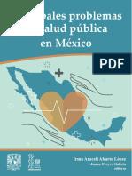 1. Problemas de S.P. en México
