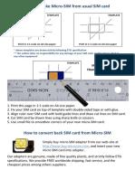 DIY_microsim.pdf