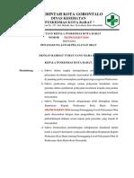 Sk Penanggung Jawab Pelayanan Obat (Revisi)