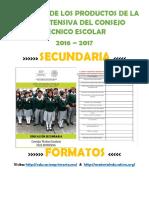 FormatosProdFIntesivaSecunCTEEP.docx