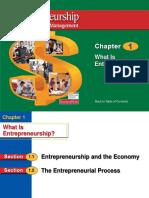 Chapter 1 what is entrepreneurship.ppt