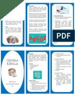 Leaflet Cedera Kepala