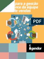 guia-para-gestao-eficiente-da-equipe-de-vendas.pdf