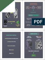 DIMORFISMO_2013_x_4.pdf